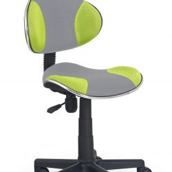 Kėdė BH0896